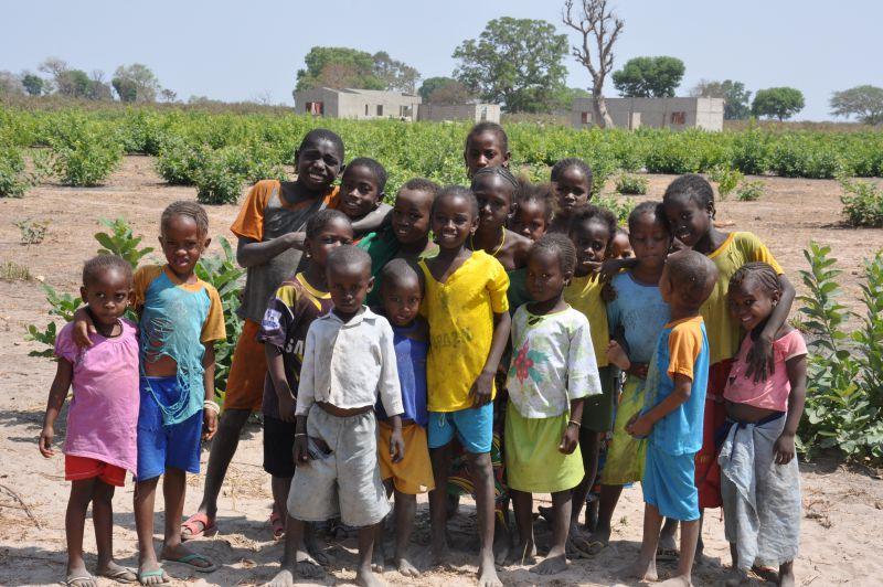 Mejora del acceso a la educación primaria de niñas y niños de Sare Dembodo, Senegal