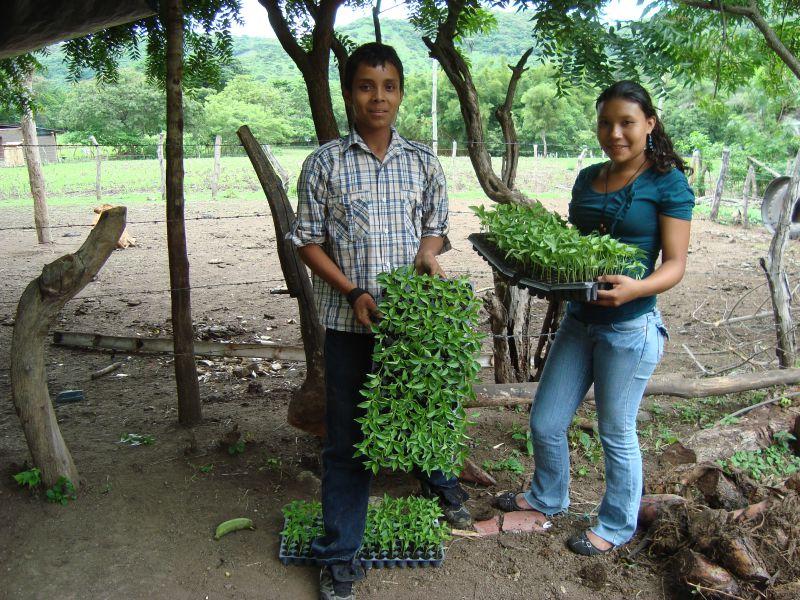 Formación técnica y ciudadana a la juventud rural de San Lucas Madriz, Nicaragua