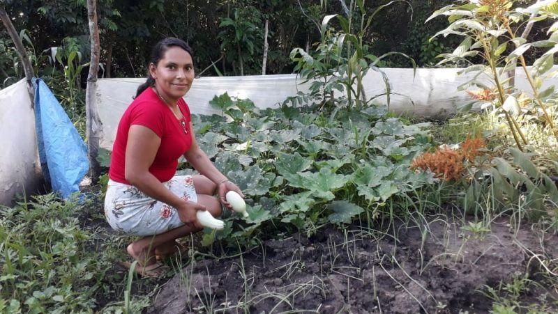Fortalecimiento de la seguridad alimentaria mediante el establecimiento de huertos biointensivos en ocho comunidades rurales del Municipio de San Lucas, Nicaragua.