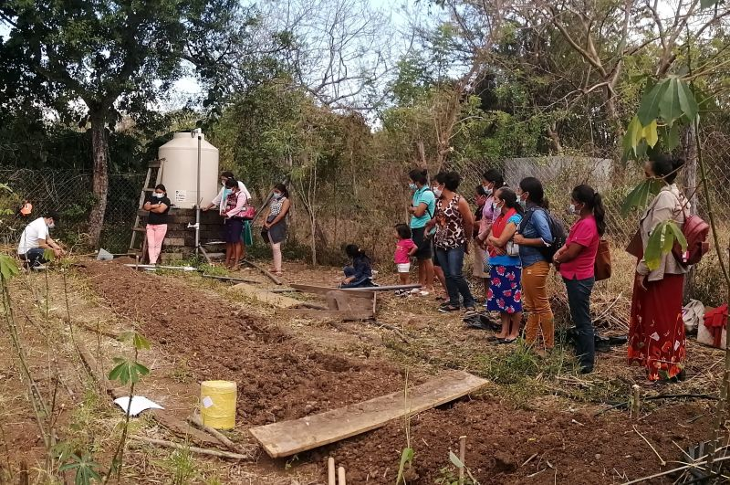 Fortalecimiento de la seguridad alimentaria de 50 familias afectadas por la sequía, mediante el establecimiento de huertos biointensivos, en comunidades rurales del Municipio de San Lucas, Nicaragua.